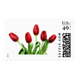 Red Tulips Postage
