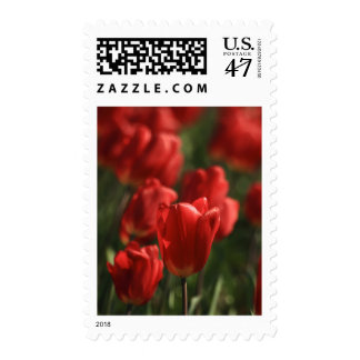 Red Tulips Stamp