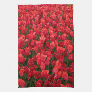 Red Tulips Towel
