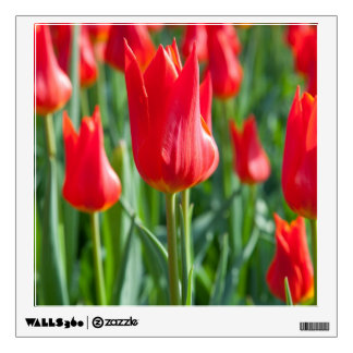 Red Tulips Wall Decal