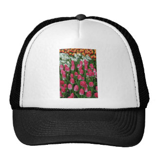 Red Tulips, White Flowers flowers Mesh Hat