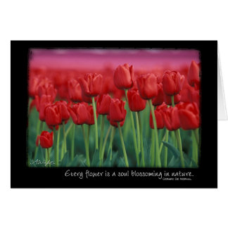 Red Tulips with Quote from Gerard DeNerval Card