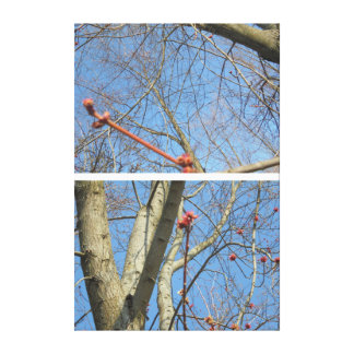 Red twigs canvas print