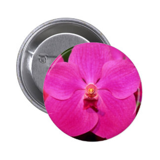 Red Vanda flowers Button