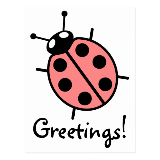 Red Vector Ladybug Postcard