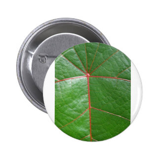 Red veined leaf pin