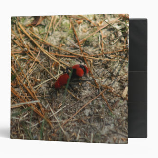 Red Velvet Ant Three Ring Binder. Binder