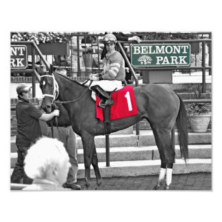 Red Velvet wins the Jersey Girl at Belmont Park Photograph