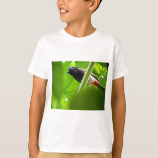 Red-vented Bulbul (Pycnonotus cafer) T-Shirt