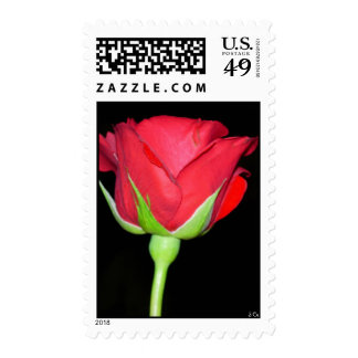 Red Vertical, S Cyr Postage Stamp