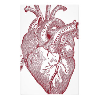 Red Vintage Anatomical Heart Stationery