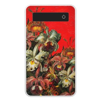 Red Vintage Flowers Oil Brush Painting Power Bank