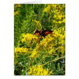 Red Wasp 5373- Vertical Card