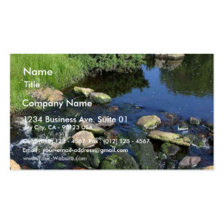 Red Water In A Stream Near Malin More Double-Sided Standard Business Cards (Pack Of 100)