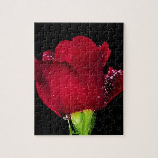 Red Wedding Rose Jigsaw Puzzle