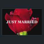"""Red Wedding Rose Yard Sign<br><div class=""""desc"""">The red wedding rose symbolizes an immortal love or a union that will never fade - even through time or death. In mythology,  rose meaning is associated with Aphrodite (Greek) goddess of love who was often depicted adorned with roses around her head,  feet and or neck.</div>"""