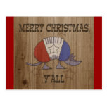 Red, White and Blue Armadillo-Merry Christmas Y'al Postcard