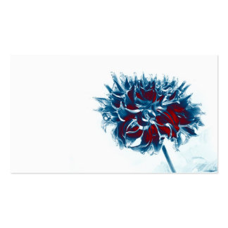 red white and blue chrysanthemum Double-Sided standard business cards (Pack of 100)