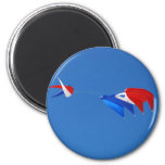 Red, White, And Blue Kite magnet