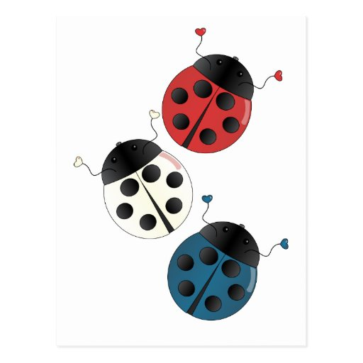 Red White and Blue Ladybugs Post Cards
