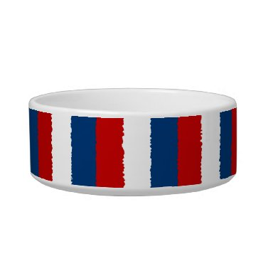 USA Themed Red, White and Blue Stripe Bowl
