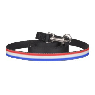 Red White and Blue Stripe Dog Leash