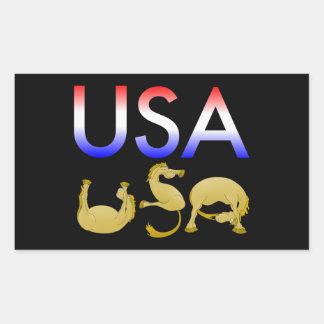 Red, white and blue USA pony Rectangular Sticker
