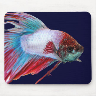 Red White & Blue (Fish clear background) Mouse Pad