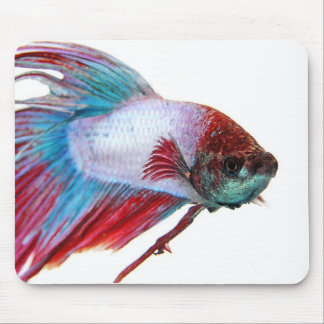 Red White & Blue (Fish on white background) Mouse Pad
