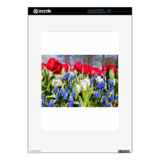 Red white blue flowers in spring season iPad skin