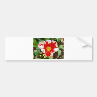Red & White Flowers Car Bumper Sticker