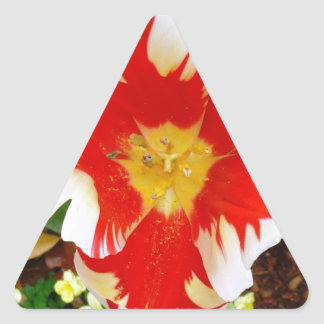Red & White Flowers Triangle Sticker