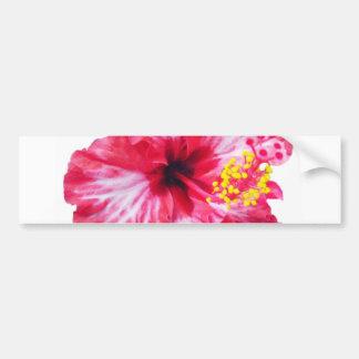 red white pink hibiscus aloha flower bumper sticker