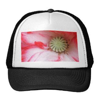 Red & White Poppy Close Up Trucker Hats