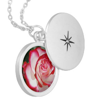 Red&White Rose, Medium Silver Plated Round Locket