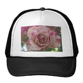 Red white rose trucker hat