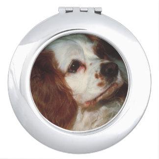 Red & White Spaniel Dog Compact Mirror