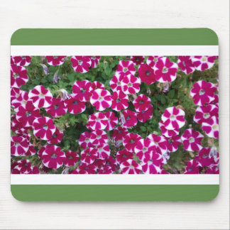 Red & White Striped Flowers, White & Green Border Mouse Pad