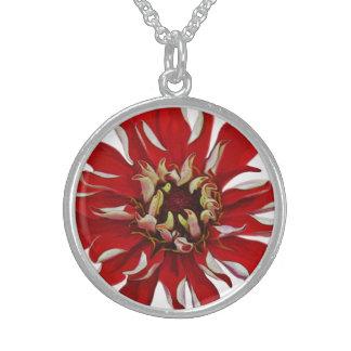 Red White Striped Zinnia Jewelry