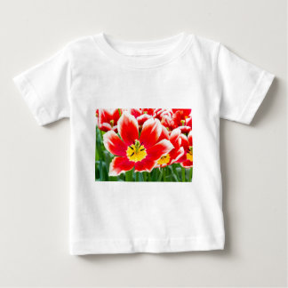 Red white tulip in field of tulips baby T-Shirt