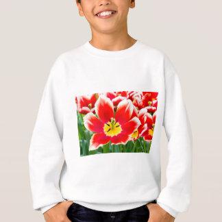 Red white tulip in field of tulips sweatshirt