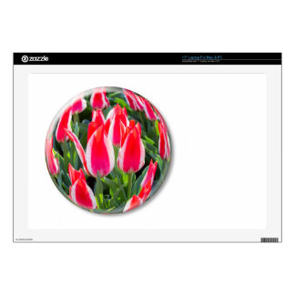 """Red white tulips in glass sphere on white 17"""" laptop skin"""