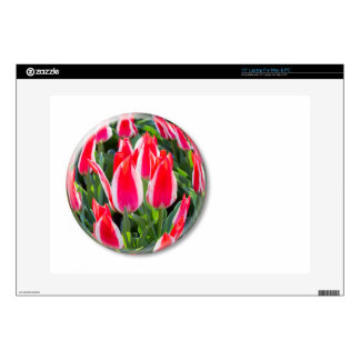 Red white tulips in glass sphere on white decals for laptops
