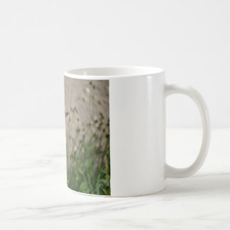 Red wildflower hummingbird classic white coffee mug