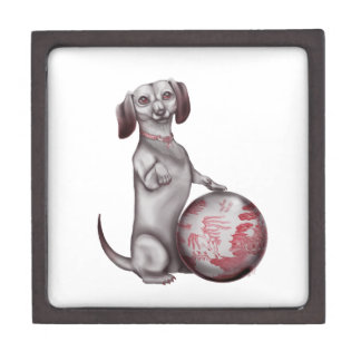 Red Willow Dachshund Premium Gift Boxes