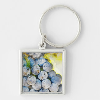 Red Wine Grapes on Vine Keychain