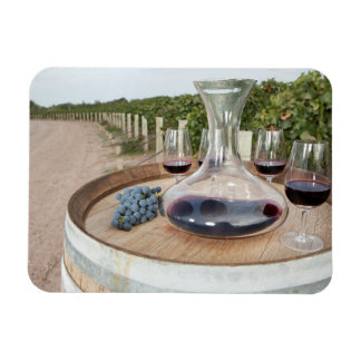 Red Wine In Vineyard Magnet