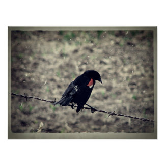 Red Wing Blackbird Faux Vintage Print