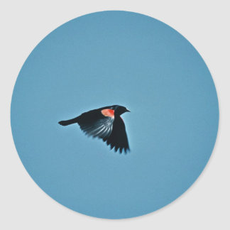 Red-wing Blackbird Round Stickers