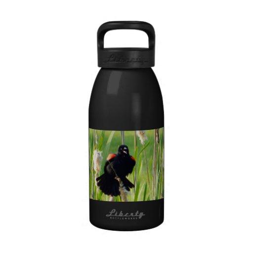 Red Wing Blackbird Water Bottle